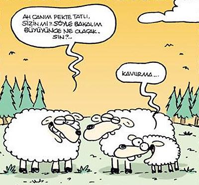kurban_1